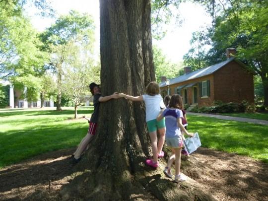 kids-measuring-tree-with-hugs-540x405